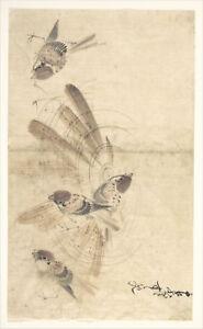 Katsushika Hokusai - Birds Print Poster Giclee