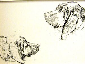 Cecil Aldin 1939 PORTRAIT of a BLOODHOUND BLOOD HOUND  Vintage Art Print Matted