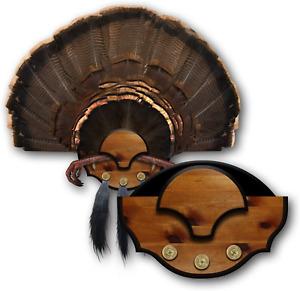 Mountain Mike's Reproductions Beard Master Turkey Mounting Kit