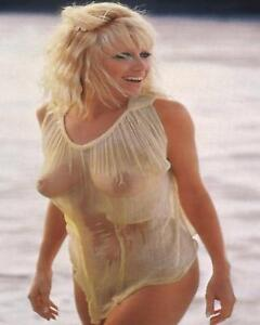 Suzanne Somers Sexy Hot Blond Pinup At The Beach Poster  13x19 inches