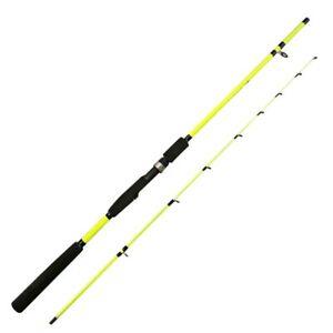 1.6m Spinning Fishing Rod Carp Bait Lure Casting Tackle Fiberglass Hard Sea Pole