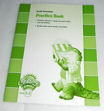 Pearson Scott Foresman Reading Street Grade 2.2 Practice Book Phonics