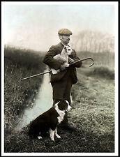 BORDER COLLIE AND SHEPHERD HOLDING LAMB LOVELY DOG PRINT POSTER