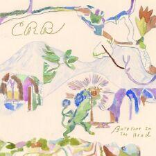 ROBINSON'S BROTHERHOOD CHRIS BAREFOOT IN THE HEAD DOPPIO VINILE LP NUOVO !