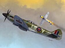 Sword 1/72 Model Kit 72096 Supermarine Spitfire Mk.XIVC/E Bubbletop