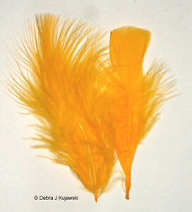 """3-8"""" Feathers Marabou Fluffy 1/2 oz (15 grams) 30 Colors Approx 70 per bag"""