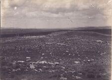 Maghreb Ruines Romaines Vintage argentique ca 1900