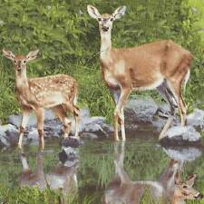 NORTH AMERICAN WILDLIFE DEER IN GRASS Cotton Fabric BTY for Quilting, Craft Etc