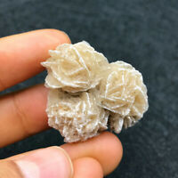Natural Desert Rose Crystal Quartz Stone Mineral Specimen Healing Collection