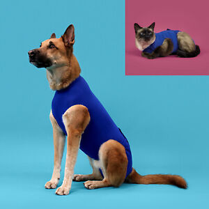 Recova Shirt from KVP, Dog & Cat Wound Recovery, Anxiety, Post Surgical Healing
