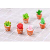 6Pcs Artificial Succulent Plants Mini Potted Succulents Picks for Home Table