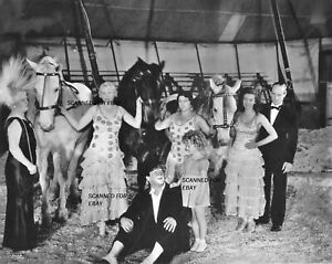 Shirley Temple on set with clown & horses child movie star 8x10 photo SH975