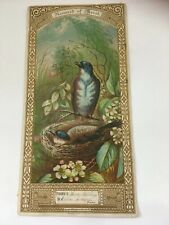 Reward of Merit Cards Student School Antique Victorian Floral Birds 1882
