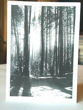 SALE! 18 Boxed Christmas Cards Set Envelopes Greeting Holiday Winter Wonderland