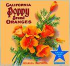 Redlands California Poppy #1 Orange Citrus Fruit Crate Label Vintage Art Print