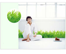 New Removable Wall Stickers Home Decor Decal Mural Room Paper Art Grass Green