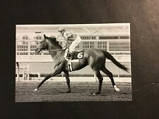 EXCELLER  Photo Horse Racing CHAMPION