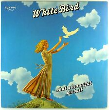 """12"""" LP - What A Beautiful Pinball - White Bird - A3570 - RAR - washed & cleaned"""