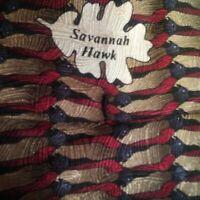 The Nature Conservancy Savannah Hawk Silk Tie EUC