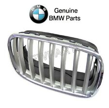 NEW BMW X5 X6 Front Passenger Right Grille Chrome Frame with Titanium Grille