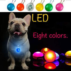 Pet Waterproof Collar LED Night Flashing Light Pendant Dog Cat Safety 8 Color