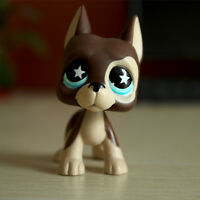 Littlest Pet Shop Great Dane Dog LPS #817 Brown Cream Blue Star Eyes Rare Puppy