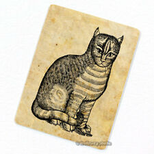 Renaissance Cat Deco Magnet, Decorative Gift Fridge Antique Animal Illustration