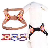 Eg _ Controllo Piccolo Pettorina per Cane Cucciolo Regolabile Animale Domestico