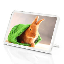 Cute Baby Bunny Classic Fridge Magnet - Rabbit Pet Bunnies Animal Gift #14578