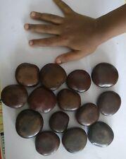 5 Entada rheedii Seeds African dream herb snuff box sea bean cacoon vine