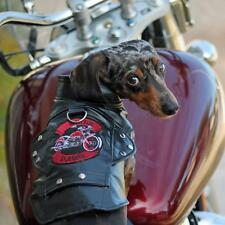 M DOG COAT mini dachshund westie bichon DOG BIKER MOTORCYCLE JACKET clothes