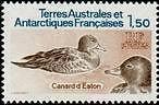 "TERRES AUSTRALES N°97 ""FAUNE, CANARDS D'EATON 1 F. 50"" NEUF xx TTB"