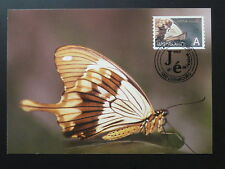 insect butterfly maximum card Luxembourg 2002