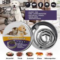 Collar de pulgas natural para perros - Protección contra pulgas y garrapatas dur