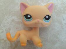 Littlest Pet Shop RARE Standing Cat Kitten #339 Short Hair Race About Ranch