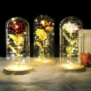 Beauty And The Beast Red Rose In A Glass Dome On A Wooden Base For Valentine's