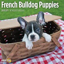 2021 French Bulldog Puppies 12 x 12 Wall Calendar Cute Dog