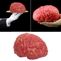 1pcs Gory Bloody Fake Brain Horror Prank Halloween Prop Decoration New.