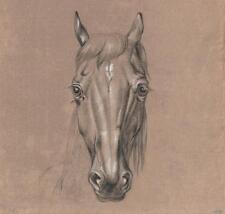 FANTASTIC OLD MASTER HORSE PORTRAIT STUDY Chalk Drawing c1815 ARTIST MH