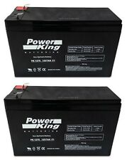 Razor Scooter Replacement Batteries (2) Pack