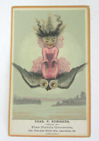Vtg HALLOWEEN Trade Card Grocer Lancaster PA Witch Rides Owl 1910s -20s
