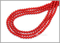 "16"" Red Bamboo Coral Round Beads 3.5mm #63068"
