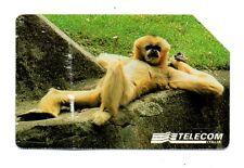 SCHEDA TELEFONICA TELECOM - ANIMALI PER MODO DI DIRE - SCIMMIA