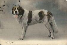 St. Bernard Dog c1905 French Postcard