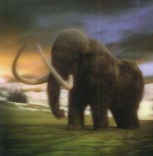 Quadratische Lentikular - 3D -Karte: Wollhaar - Mammut - woolly mammoth