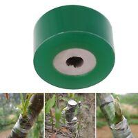 Branch Gardening Bind Belt PVC Tie Tape Parafilm Secateurs Engraft 3CM x 100M