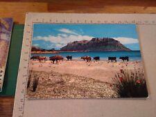 144607 olbia sardegna pittoresca isola tavolara