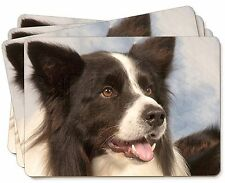 Border Collie Dog Picture Placemats in Gift Box, AD-CO4P