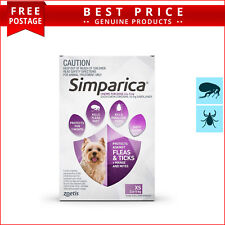 SIMPARICA for Dogs 2.6 to 5 Kg 3 Doses PURPLE by Zoetis