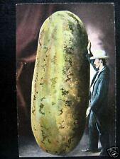 California~1900's Huge Watermelon~Wow !